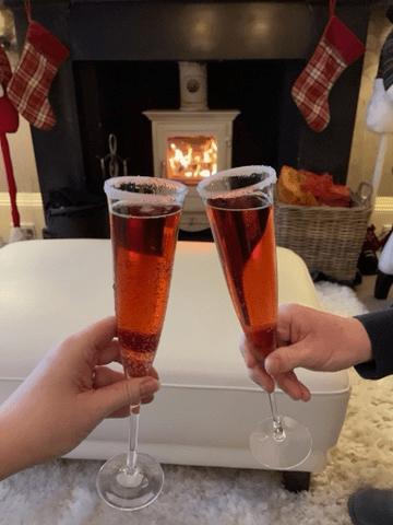 Clinking glasses in front of a log burner