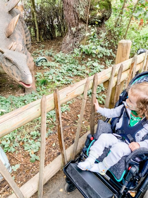 A boy in a pushchair looks through a wooden fence to a dinosaur statue at blair drummond